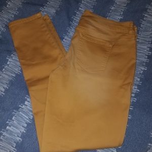 BEAUTIFUL mustard Jeggings